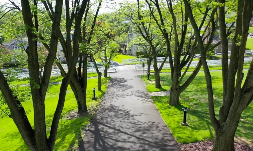 Caron campus Pennsylvania walkway path with trees on both sides.k