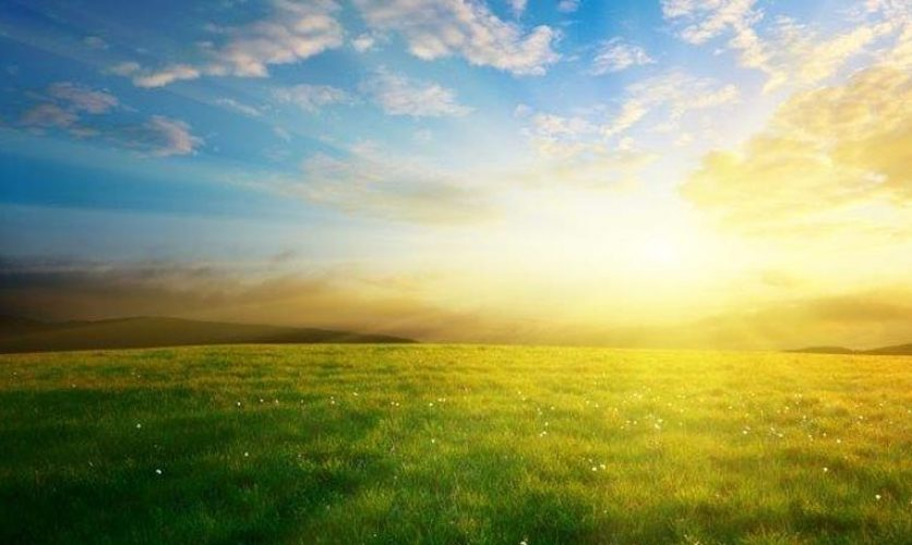 Bright sunrise appearing on a green horizon in front of a blue sky.