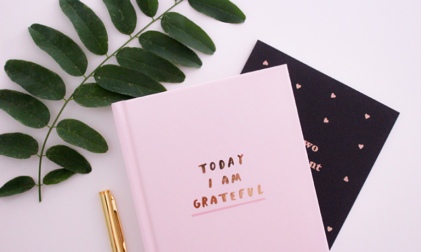 Flat lay of a pink gratitude journal, gold pen, and sprig of greenery.