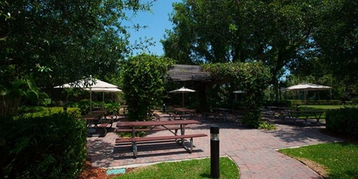 Photo of the exterior grounds of the residences at Renaissance. Picnic tables and umbrellas in the photo show an outdoor dining space.