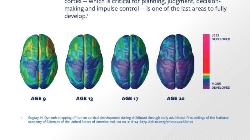 Infographic showing the brain's maturity over time, from age 9 to age 20. Maturity is conveyed as a heat map diagram of the brain.