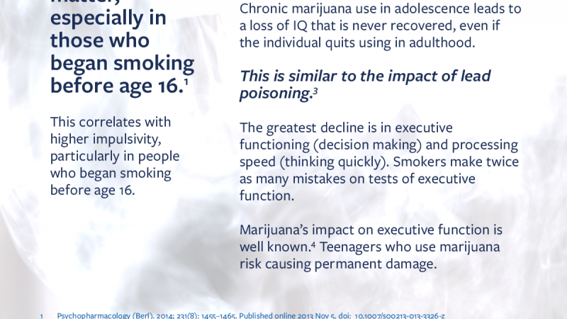 Infographic describing marijuana's impact on cognitive function on teenagers, including a permanent 6 point IQ drop when used before the age of 16.
