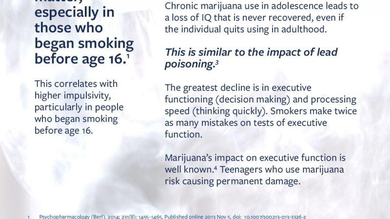 Caron marijuana infographic